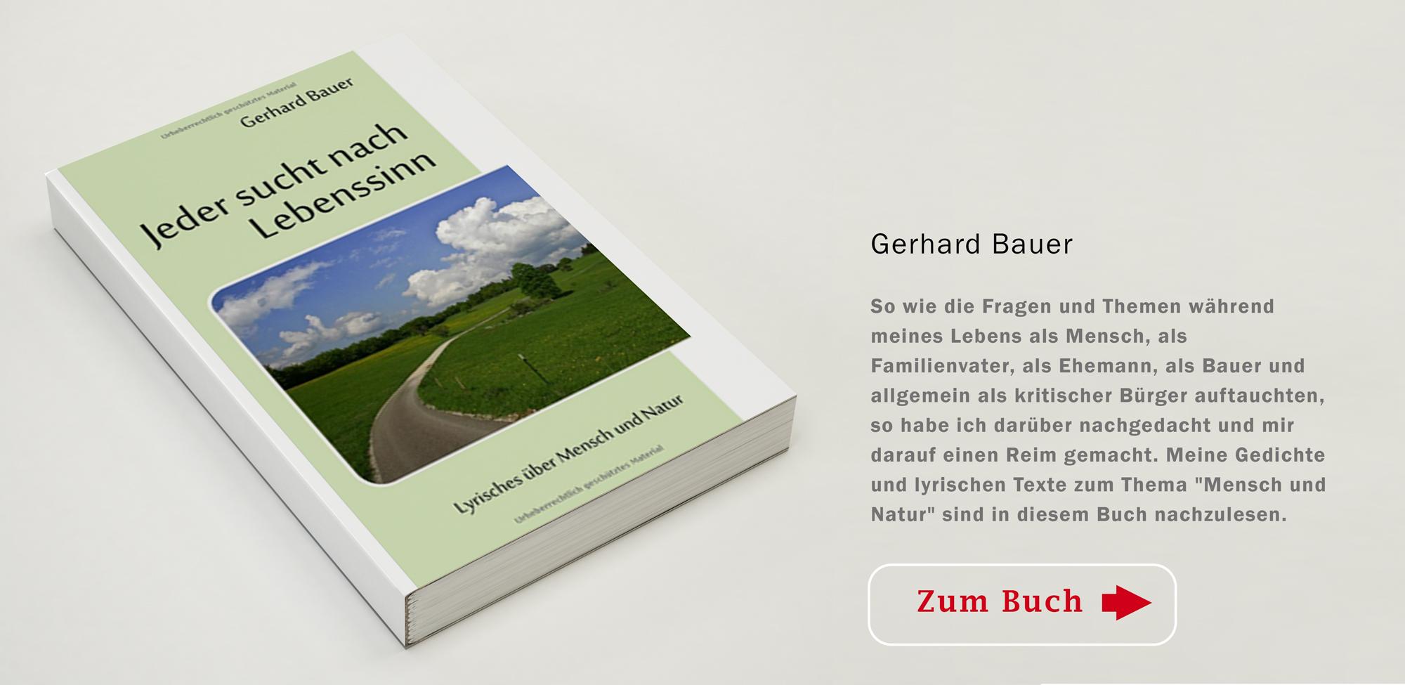 Buch Gerhard Bauer Jeder sucht nach Lebenssinn
